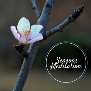 Meditation on the Seasons