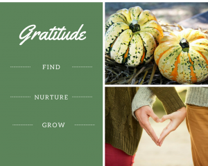 Gratitude: Find, Nurture, Grow